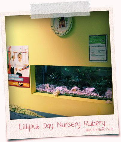 fish tank in the wall at rubery day nursery
